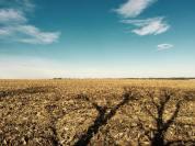 Good soil, big harvest