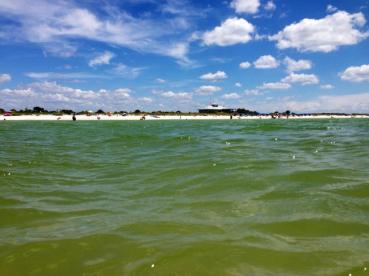 Honeymoon Island, Florida, 2013. My self-baptism.